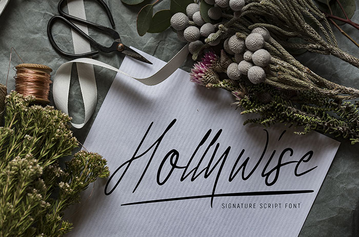 Hollywise Signature Script Font