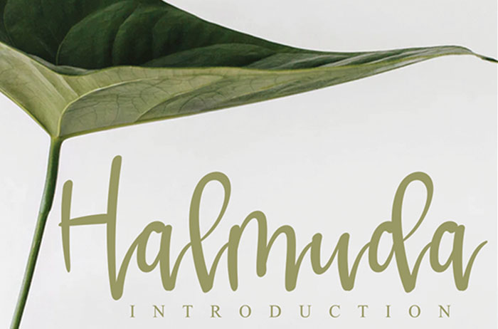 Halmuda Calligraphy Font