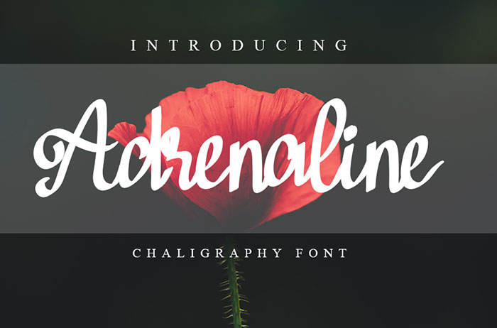 Adrenaline Calligraphy Font