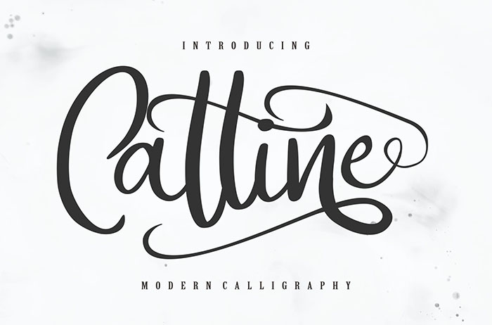 Catline Calligraphy Font